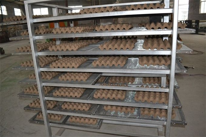 Environment Friendly Paper Egg Tray Making Machine With High Efficiency